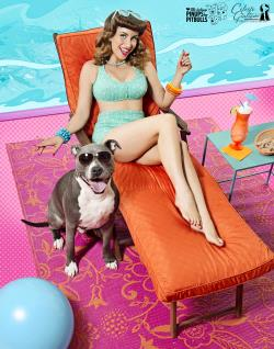 /Images/uploads/Pinups for Pitbulls/greatestpits/entries/13045.jpg